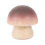 Houten-champignon-BJF123-Bigjigs-speelgoedbox
